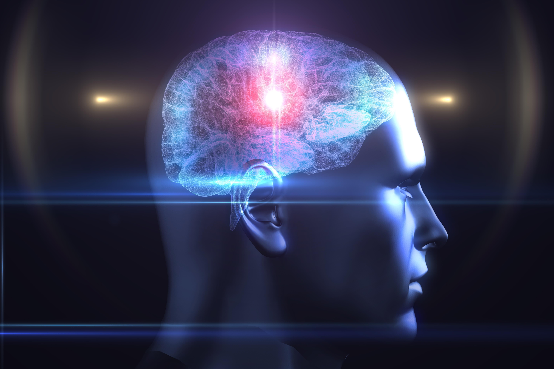 Brain spark